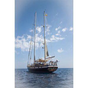 Navegando Agarimo 5 Velero Alquiler en Ibiza