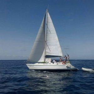 Navegando Puma 37 Velero Alquiler en Ibiza